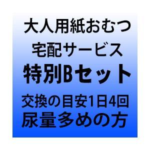 大人用紙おむつ宅配サービス 特別Bセット 尿量多めの方|okitatami