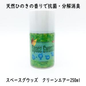 消臭 抗菌 天然 フィトンチッド ナリフィトン35スペースウッズクリーンエアー250ml |okitatami
