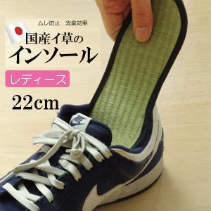 消臭インソール たたみ 中敷き レディース 消臭 抗菌 い草インソール ネイビー 約22cm|okitatami