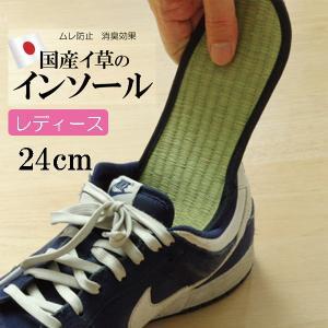 消臭インソール たたみ 中敷き レディース 消臭 抗菌 い草インソール ネイビー 約24cm|okitatami