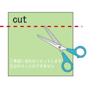 畳 ユニット へりなし座シリーズオーダーカット 置き畳用オプション|okitatami