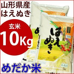 玄米 10kg 山形県産はえぬき めだか米...