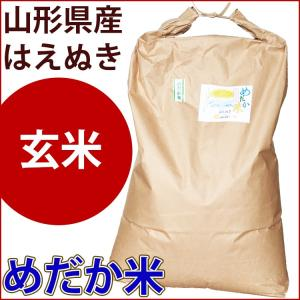 玄米 30kg 山形県産はえぬき めだか米...