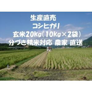令和元年産新米 コシヒカリ 玄米 20kg (10kg×2袋)農家 産直 直送 新米