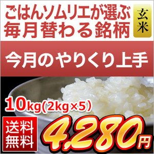 お米 玄米 山口県産 晴るる 米 10kg(5kg×2袋) ...