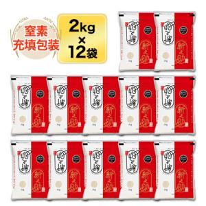 白米 24kg 新潟県産 新之助 24kg(2kg×12袋)令和元年産(2019年) 米袋は真空包装