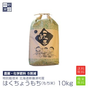 お米 10kg もち米 風の子もち 送料無料 特別栽培米 北...