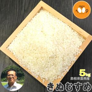 米 5kg 白米 島根県雲南産 きぬむすめ 石原公夫 令和2年産|okomeno1009