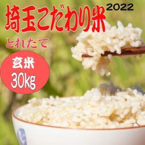 お米 玄米30kg 送料無料 埼玉こだわり米