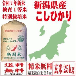 お米 玄米30k 特別栽培米 29年産新米 新潟こしひかり...