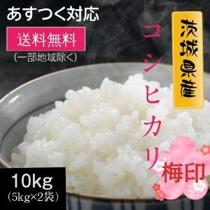 米 お米 10kg コシヒカリ 梅印 白米 茨城県産 5kg×2袋 元年産 送料無料