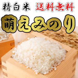 (送料無料)萌えみのり 精白米10kg 新米 令和二年産(農家直送)