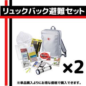 【防災セット】リュックバッグ避難セット×2個セット 248-...
