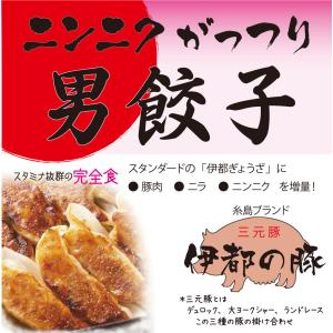 冷凍・男餃子(16ヶ入り、たれ付き) ニンニクがっつり 男はスタミナ!|okumanryo