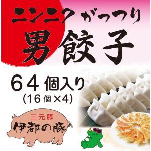 冷凍・男餃子(16ヶ入り×4、たれ付き) ニンニクがっつり 男はスタミナ!|okumanryo