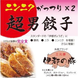 冷凍・超男餃子(16ヶ入り、たれ付き)、ニンニク がっつり×2 スタミナ2倍?|okumanryo