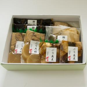 鰤三昧(ぶりざんまい)|okunoto-hamano