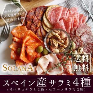 イベリコ豚・セラーノ豚 おうちバル サラミ・チ...の関連商品3