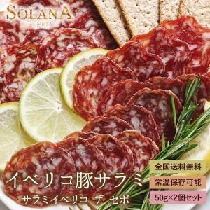 ポイント消化 訳あり セール イベリコ豚 お試し 長期熟成生サラミ 100g おつまみ 送料無料