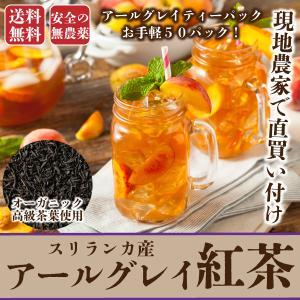 ポイント消化 風邪予防 ウィルス対策 セール お徳用紅茶100包入り 大容量 セイロンティー 送料無料