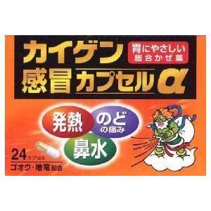第(2)類医薬品カイゲン感冒カプセルα 24cap