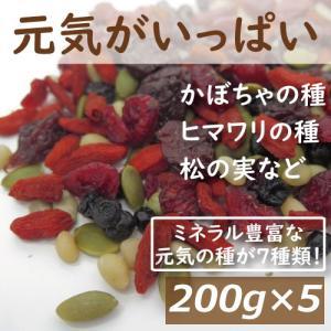 ナッツ 元気がいっぱい 1kg (200gx5)送料無料 (ひまわりの種 かぼちゃの種 クコの実 松の実 クランベリー ワイルドブルーベリー レッドチェリー) グルメ omamesan