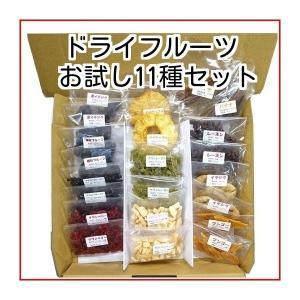 ドライフルーツ こだわりドライフルーツお試しセット 保存料無添加 11種類 グルメ