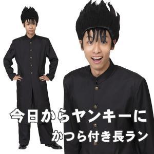 今日から俺は不良です 学ラン 長ラン ヤンキー コスプレ かつら 制服 コスチューム 衣装 スケバン...