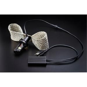 LED RIBBON エルリボン H4型タイプ1の商品画像
