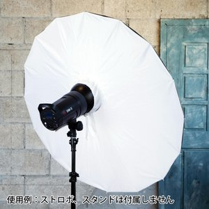 【スポット商品】カサトレProシリーズ[サイズ/タイプをお選びください]
