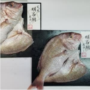 おもてなしギフト 明石鯛の灰干し「匠」 明石沖で獲れた新鮮な魚をそのまま干物に 明石鯛の灰干し「匠」2尾入り|omotenashigift|04