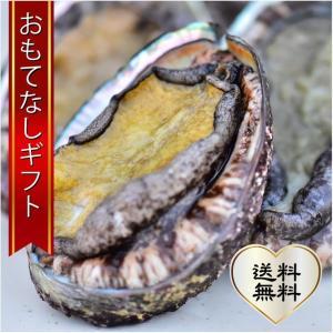 おもてなしギフト 活アワビ 石巻の寄磯浜の金華アワビ(蝦夷あわび) 強い海流に鍛えられて身がしまっていて甘みがあります|omotenashigift