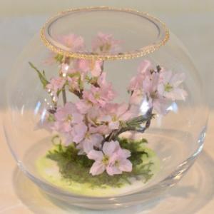 おもてなしギフト フラワーボトル 生花を色や形をそのままに、3ヶ月から半年間(保存状態によっては更に長期間)綺麗に咲かせます 球状型ボトル|omotenashigift|05