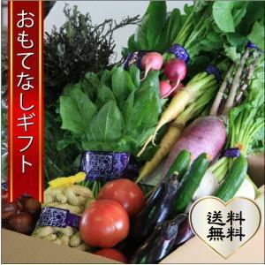 おもてなしギフト 野菜セット 鎌倉青果市場からその日の野菜をお届け 鎌倉いちばブランド野菜セット|omotenashigift