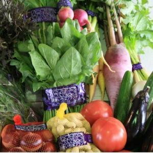おもてなしギフト 野菜セット 鎌倉青果市場からその日の野菜をお届け 鎌倉いちばブランド野菜セット|omotenashigift|02
