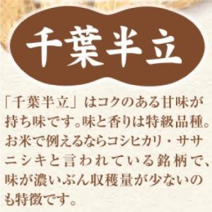 おもてなしギフト 千葉名産品の半立種のから付落花生 天日乾燥したました 千葉とみいの落花生(300g×2袋)|omotenashigift|05