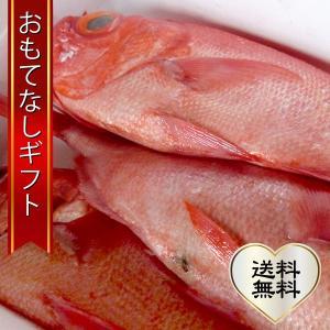 おもてなしギフト 金目鯛 公海 トロ金目鯛 3尾まるごとセット|omotenashigift
