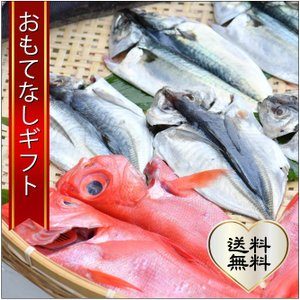 おもてなしギフト 三崎の干物 三浦半島の三崎 うらりのさざえやがお届けする季節の干物|omotenashigift