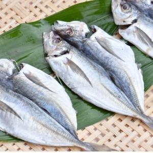 おもてなしギフト 三崎の干物 三浦半島の三崎 うらりのさざえやがお届けする季節の干物|omotenashigift|04