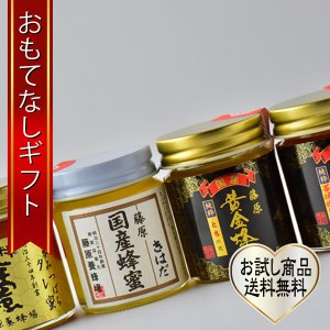 おもてなしギフト 国産はちみつ 藤原養蜂場の贈る前に確かめたいお試しセットA|omotenashigift