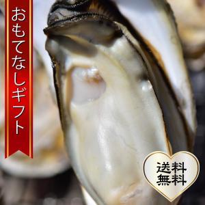 おもてなしギフト 北海道 厚岸湾の端の尻羽岬に位置する仙鳳趾のプリプリ牡蠣 身が大粒で甘みと濃厚なコクを味わってください omotenashigift