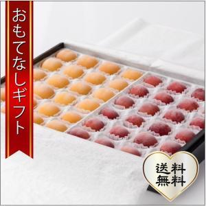 おもてなしギフト 北海道の夏を彩る大橋さくらんぼ園のギフト用フローズンさくらんぼ スペシャルサイズ 2種48粒|omotenashigift
