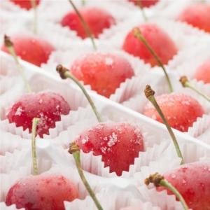 おもてなしギフト 北海道の夏を彩る大橋さくらんぼ園のギフト用フローズンさくらんぼ スペシャルサイズ 2種48粒 omotenashigift 06