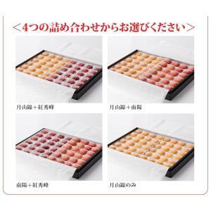 おもてなしギフト 北海道の夏を彩る大橋さくらんぼ園のギフト用フローズンさくらんぼ スペシャルサイズ 2種48粒 omotenashigift 07