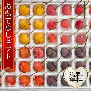 おもてなしギフト 北海道の夏を彩る大橋さくらんぼ園のギフト用フローズンさくらんぼ プレミアムサイズ 4種48粒(タイル柄) 1シーズン10箱限定|omotenashigift