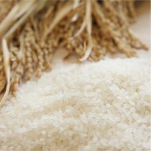 おもてなしギフト ササニシキ 登米産のお米にこだわるマキ米穀店の宮城県産登米のササニシキの玄米|omotenashigift|05