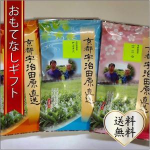 おもてなしギフト 宇治茶 宇治田原町の浅田園のストレート茶の飲み比べ3本セット(ごこう、やぶきた、さえみどり) omotenashigift