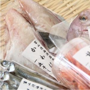 おもてなしギフト 干物詰合せ 富山県魚津の朝野商店の魚市場でセリ、加工して届ける旬の紅白干物セット(梅)|omotenashigift|05