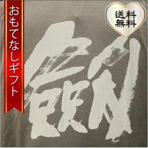 おもてなしギフト Tシャツ 立山の玄関 富山県魚津から届けるアルピニストのための剱岳クールナイスTシャツ|omotenashigift