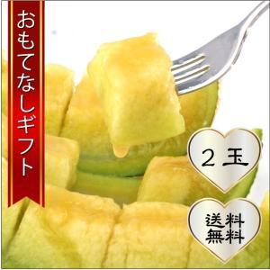 おもてなしギフト マスクメロン 日本茶専門店 茶井が選んだ三浦半島の津久井浜の温室メロン(LLサイズ 2玉入り)|omotenashigift